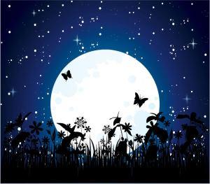 moon-night1
